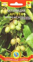Купить семена актинидии