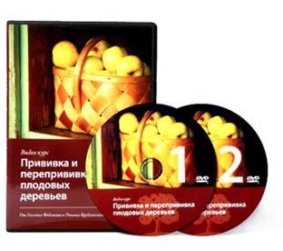 Купить видеокурс о прививке плодовых деревьев